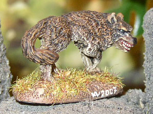 2007-brownwolf-06